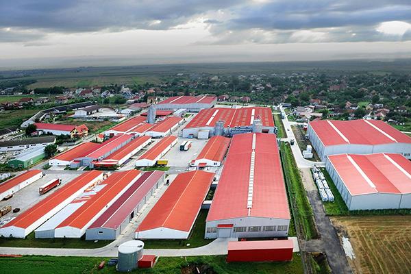 dudestii-noi-hale-industriale-fabrici
